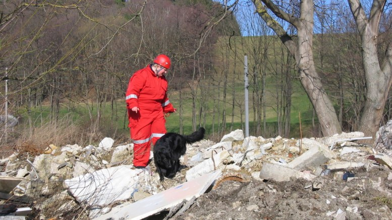 Search and Rescue dog training. Lommedalen