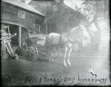 HorseandBuggy