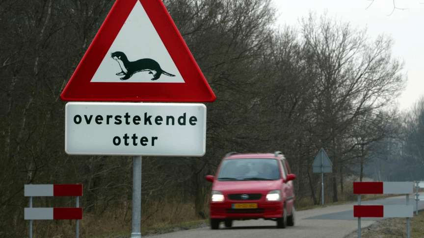 Crossing otters sign