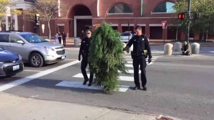 Boom gearresteerd