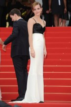 Cannes-Festival-2013-2[1]