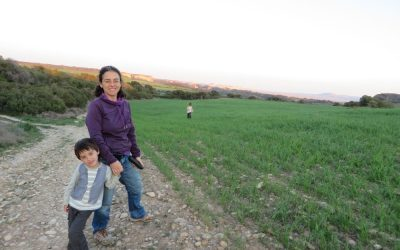 NAVARRA: DESDE LAS BARDENAS A LOS PIRINEOS