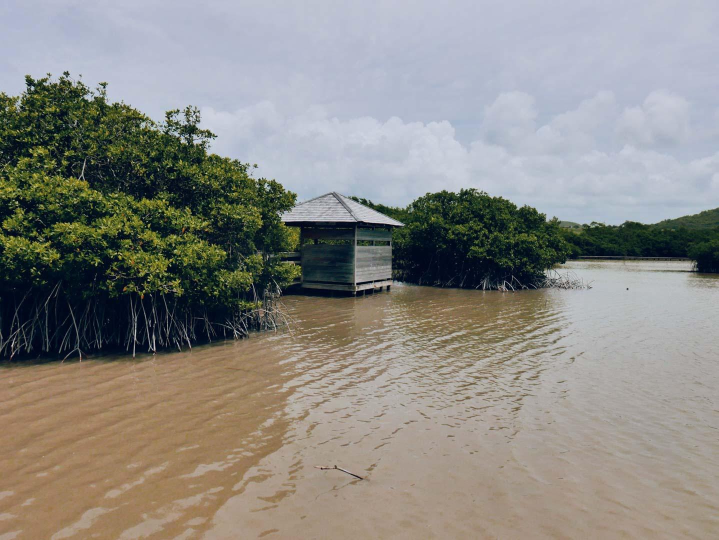 étang des Salines maritnique