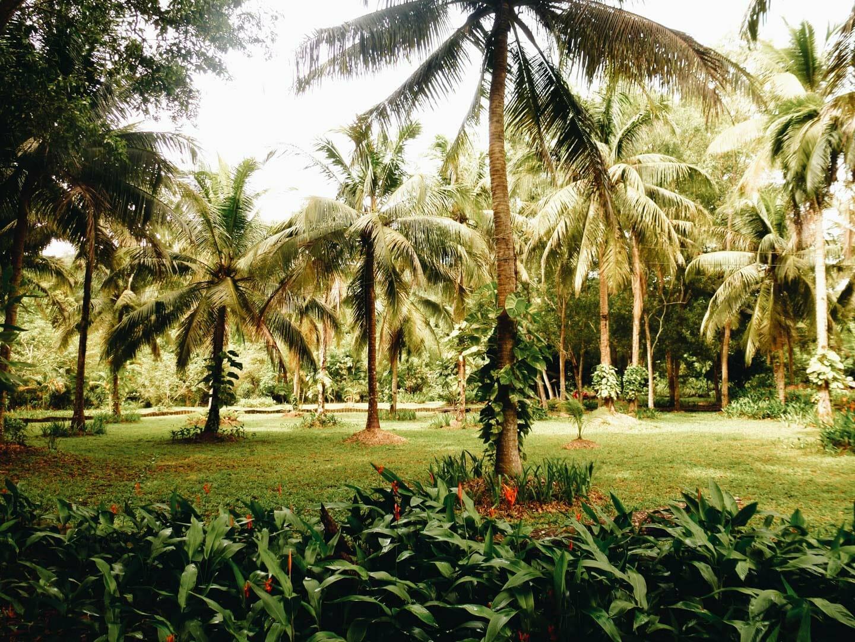 parc phu quoc vietnam
