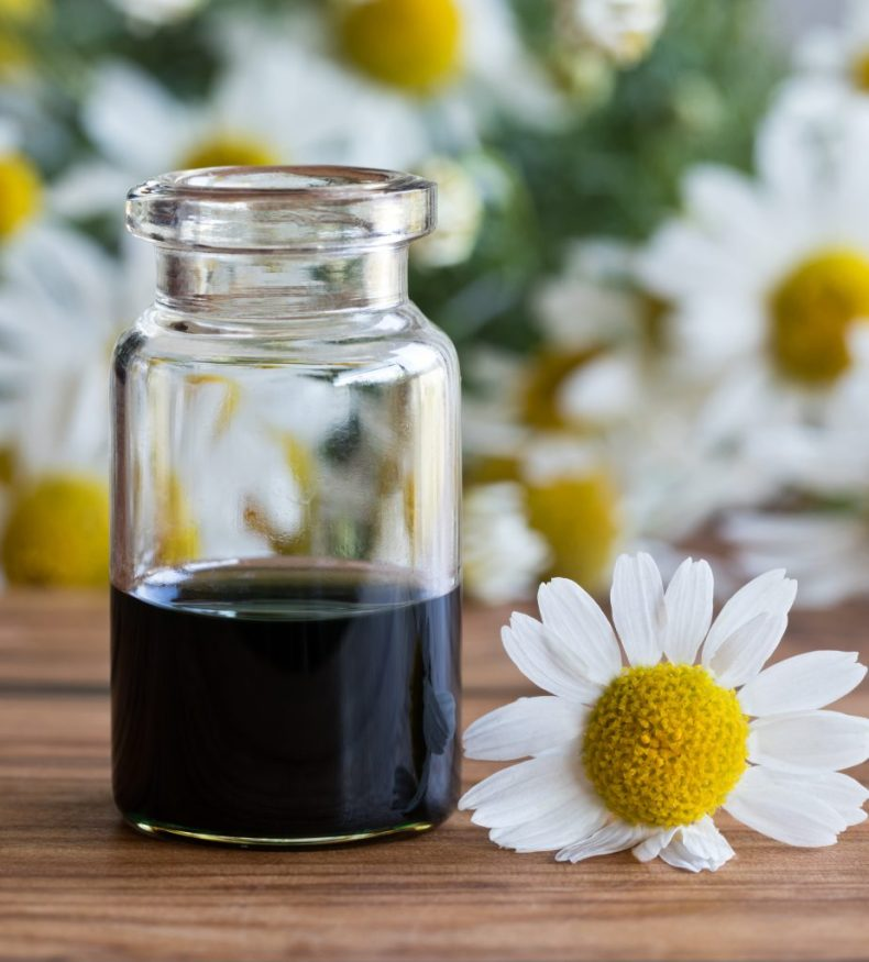 A bottle of chamomile essential oil