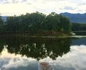 Nagaland. Not just Hornbill