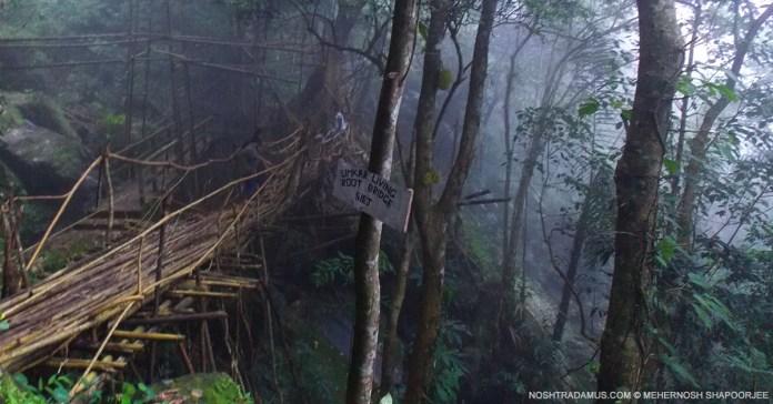 Living Root Bridge, Umkar in Meghalaya