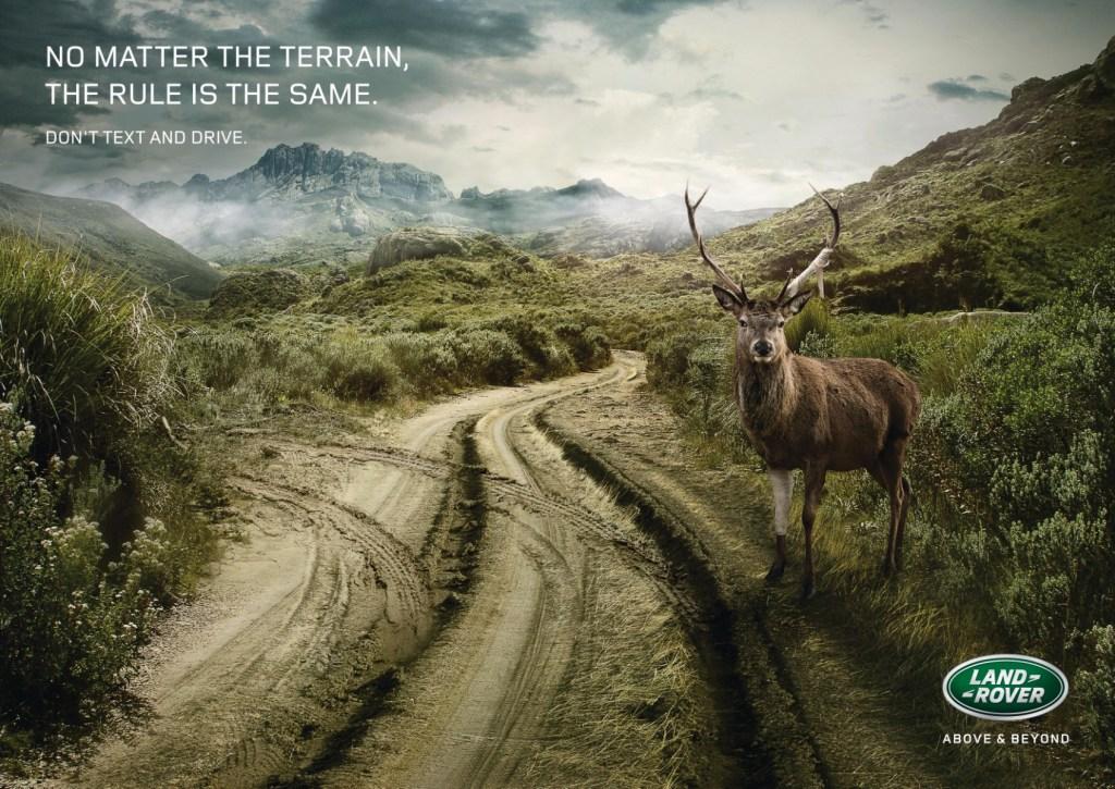 Land Rover - Deer