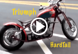 Hardtail Springer Triumph