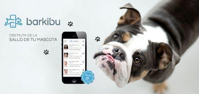 Barkibu App