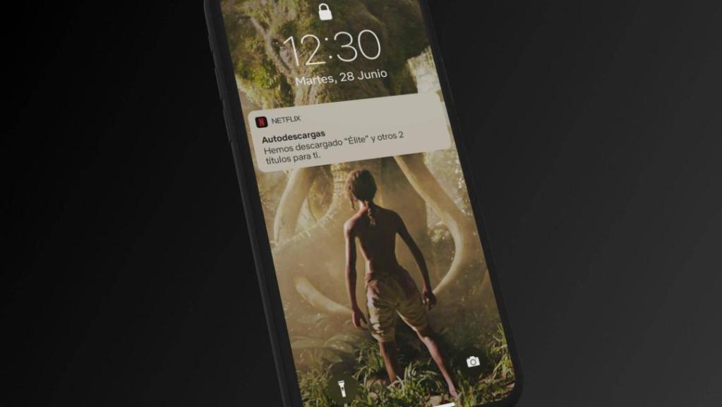 Netflix lanza la función de autodescargas en dispositivos iOS 2