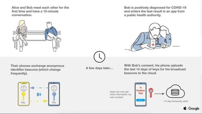 Apple y Google (Coronavirus)