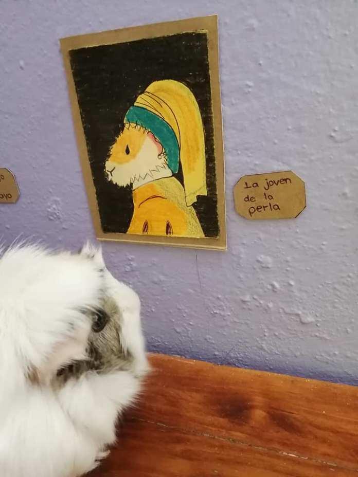 Exposición temporal Cui 20: una usuaria de Facebook recrea pinturas icónicas para sus cuyos 11