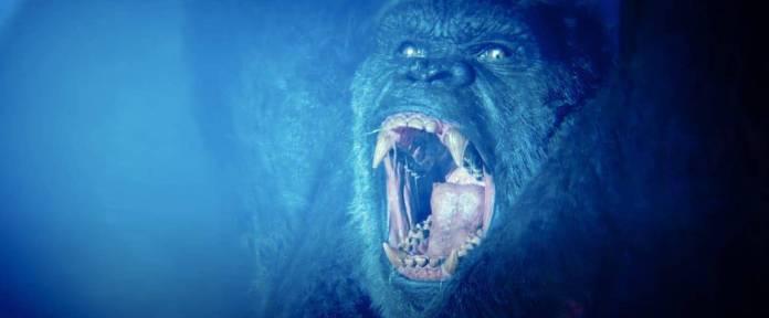 ¡El momento ha llegado! Después de una espera larga y llena de misterio, por fin llega a las salas de cine y HBO Max el nuevo lanzamiento del Monsterverse de Warner Bros, Godzilla vs Kong. Esta película promete ser el epílogo perfecto de esta saga (O quizá la continuación de la misma) por lo que tener a la información datos curiosos nos ayudará a mejorar nuestra experiencia en la batalla ¿Tú qué team eres?