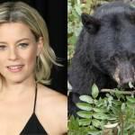 Cocaine Bear, Elizabeth Banks