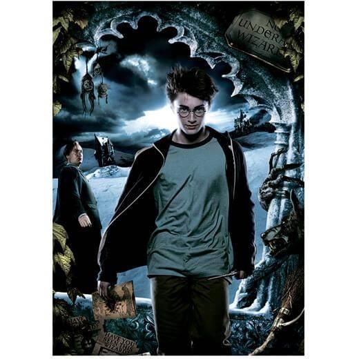 Panini Harry Potter (Tarjetas)