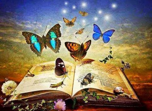 libro-lleno-de-mariposas