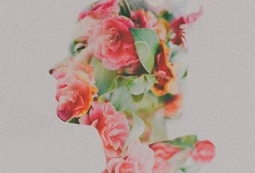 profil en fleurs