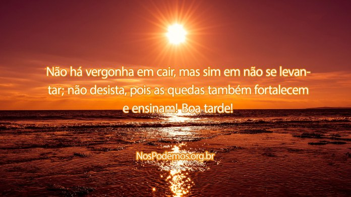 Não há vergonha em cair, mas sim em não se levantar; não desista, pois as quedas também fortalecem e ensinam! Boa tarde!