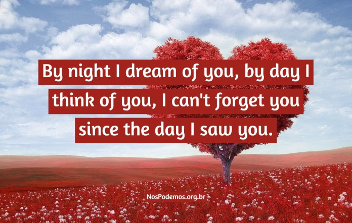 By night I dream of you, by day I think of you, I can't forget you since the day I saw you.