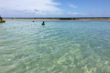Rota ecológica - Porto de Pedras - Alagoas
