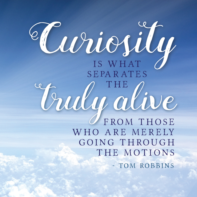 curiousity-quote-nostalgia-diaries