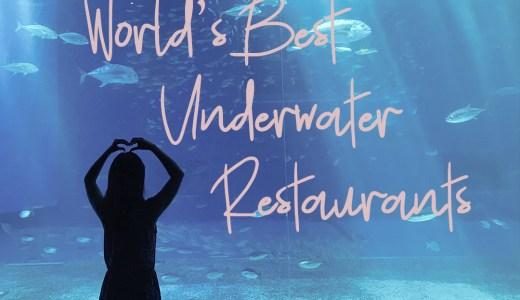 幻想的!世界の知られざる美しい水中レストラン7選