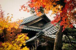 日本建築 紅葉 令和
