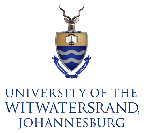 wits university implements gender