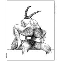 apollonia saintclair minotaure