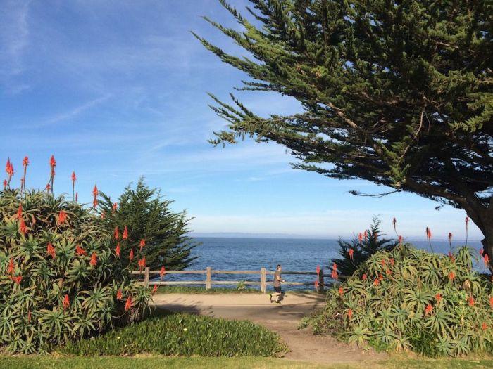 Big Surに行く途中の街「Monterey」にある公園で。