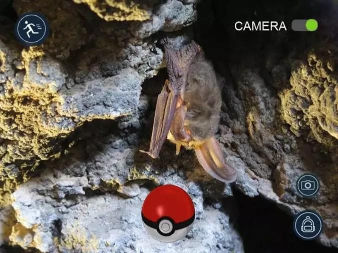 Pokemon Go Edicion Viajera