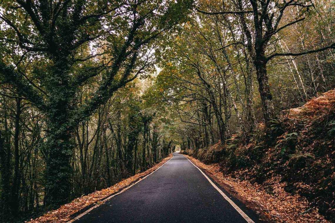 Ruta en coche por la Ribeira Sacra