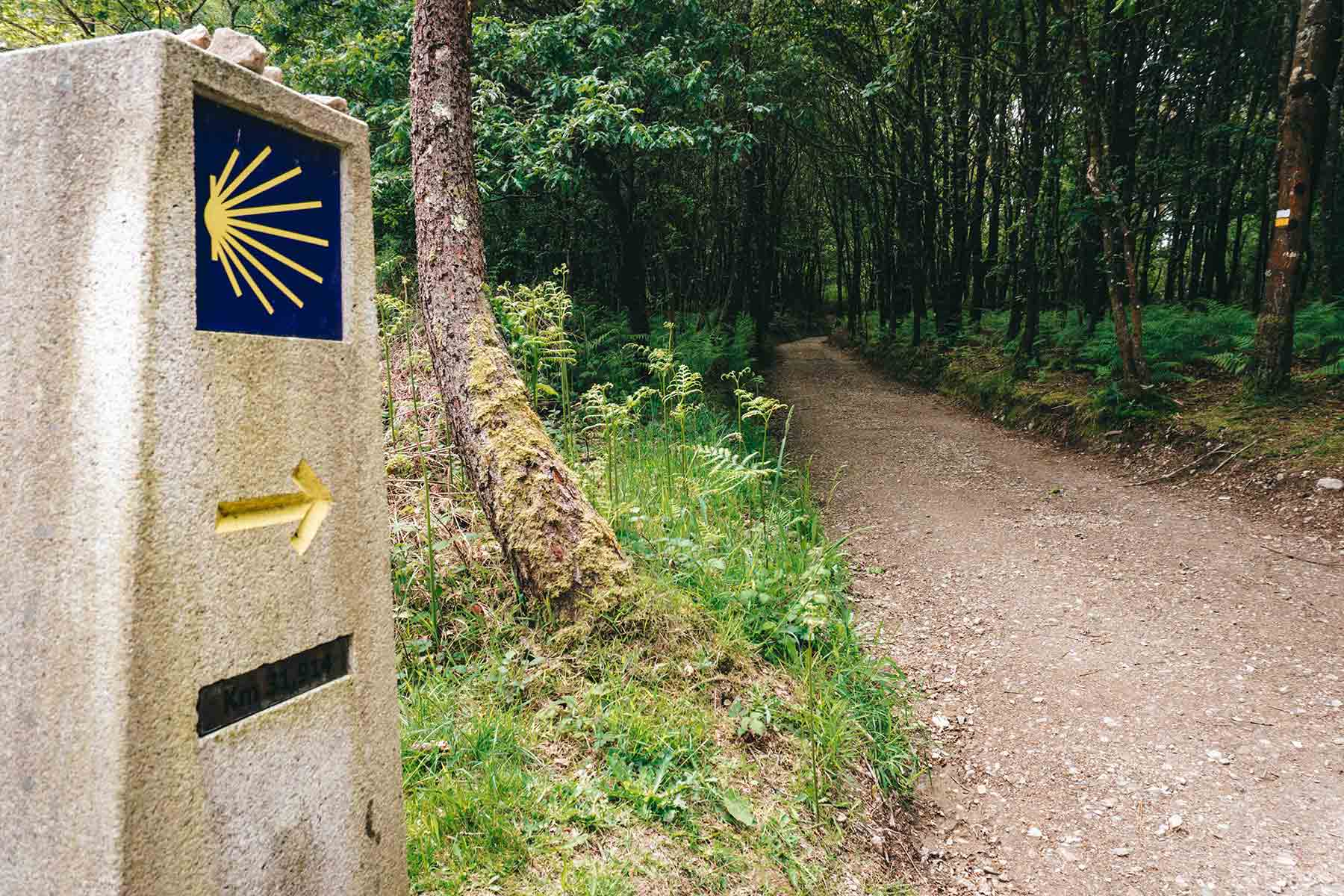 Camino Ingles