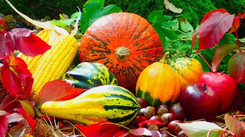 Les fruits et légumes d'Automne