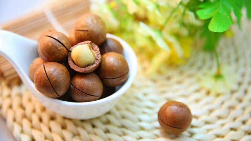 La noix de macadamia dans notre quotidien