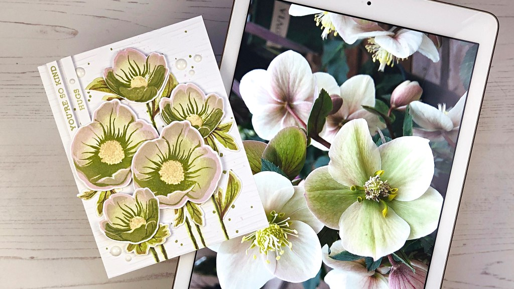 Shooting Star Hellebore Inspiration Photo Compared to Card Design