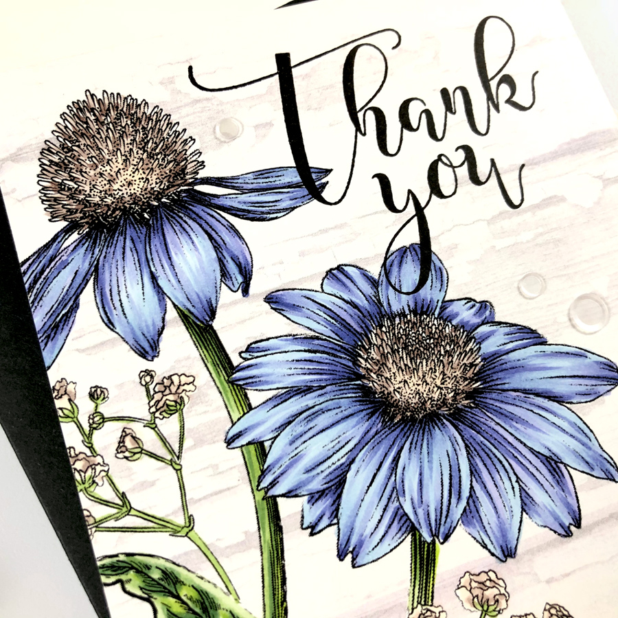 Copic colored Thank You card