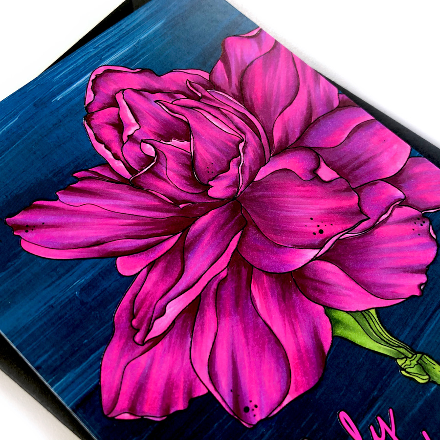 Copic Colored Shock Pink Sweet Gardenia