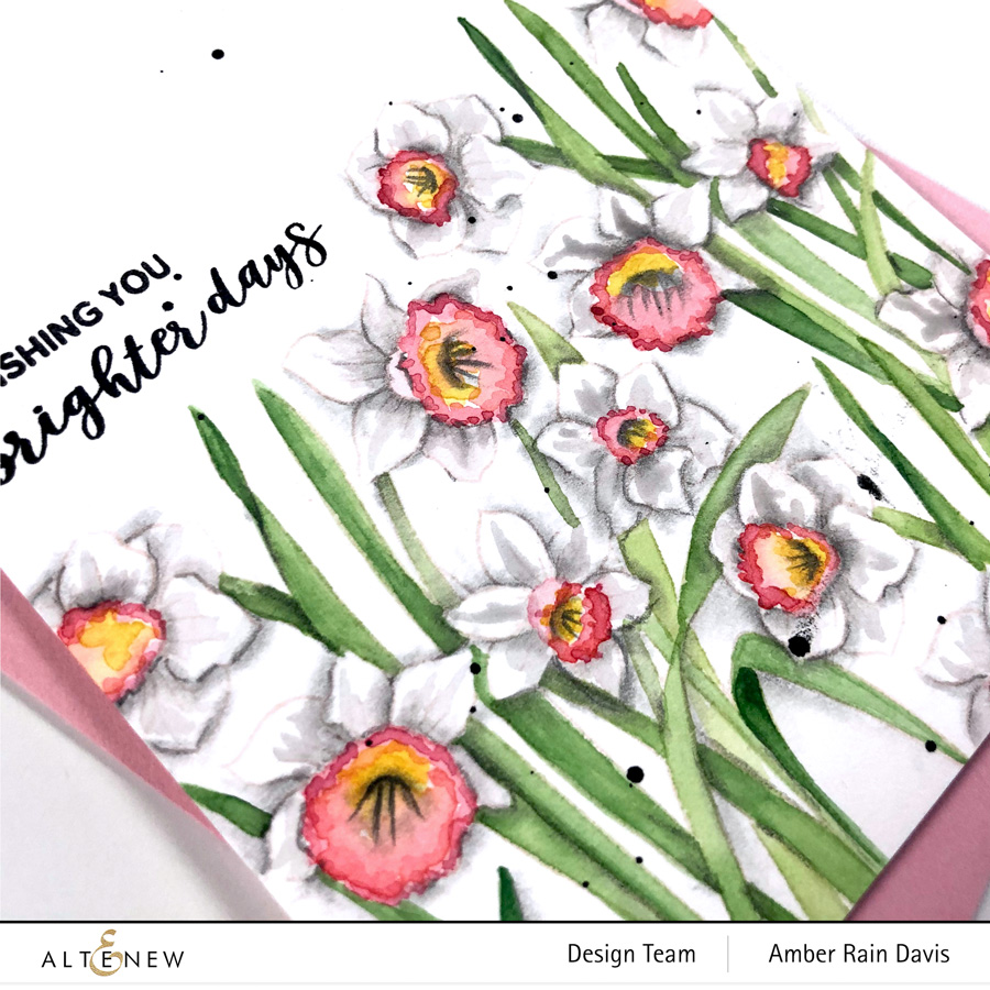 paint white flowers, watercolor white flowers