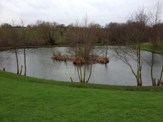 Hintlesham bottom lake