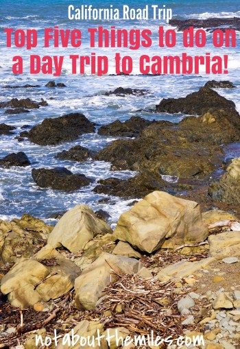 Cambria is the quintessential California coastal town, with beautiful walking trails and a charming Main Street. Read my post to discover the top five things to do in Cambria!