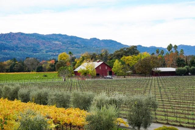 Round Pond Estates Napa Valley Caifornia