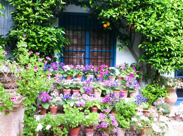 A patio at the Courtyards of Viana in Cordoba Spain