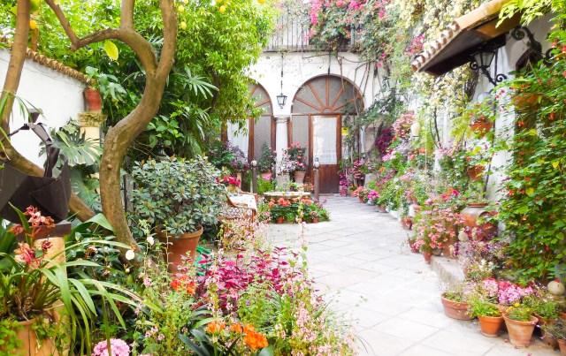 A Patio in Cordoba, Spain