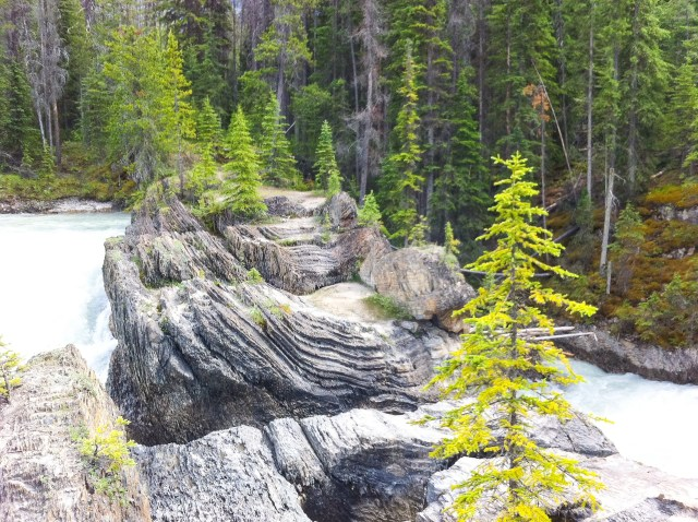 Natural Bridge over the Kicking Horse river in Yoho NP, BC, Canada