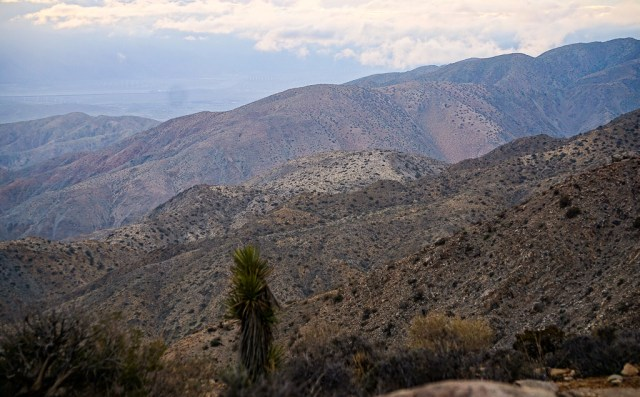 A view of the nearby mountains, from Keys View in Joshua Tree National Park, California, USA