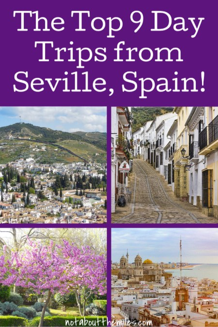 The 9 best day trips from Seville you must do, from Cordoba to Granada and Carmona to Cadiz. Explore beautiful Andalusia's historic cities, natural beauty, sunkissed coast, and pretty white villages, all from your base in Seville, Spain!