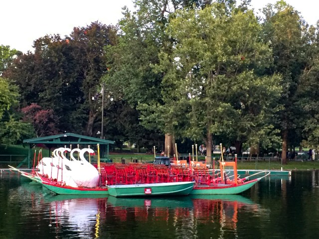 Boston swan boats docked for the night