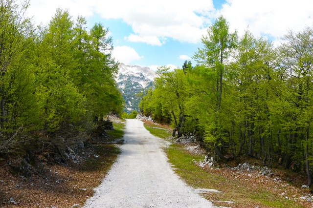 Walking Trail Mount Vogel Slovenia